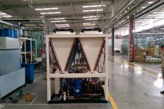 TICA-plant-1_zxp05nr6