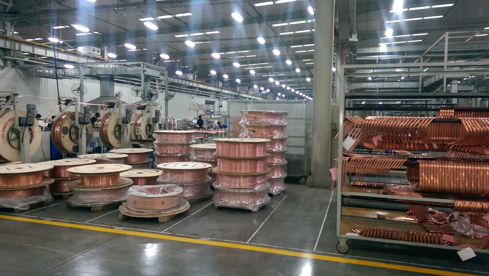 TICA-plant-14_3ll34105