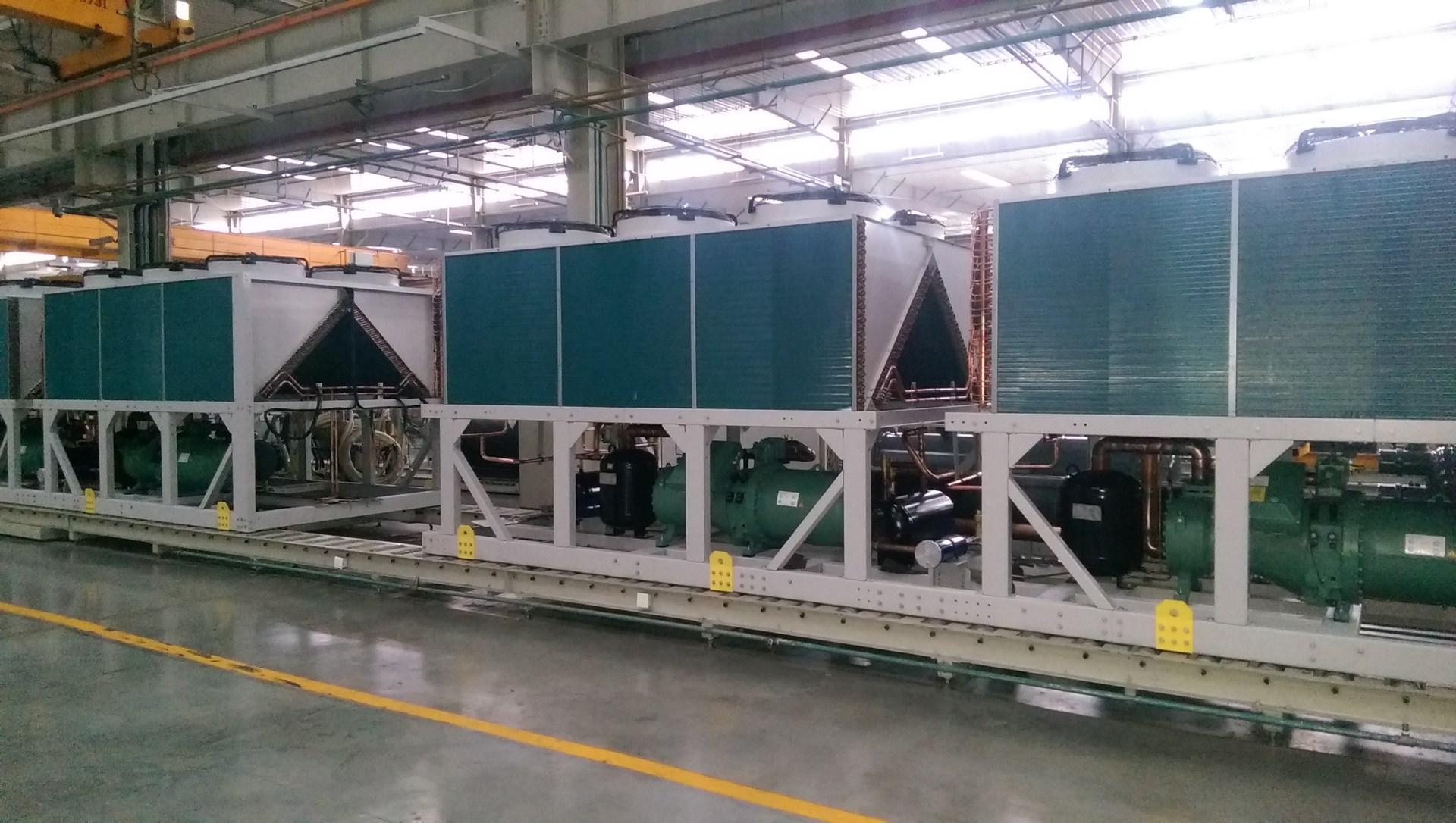 TICA-plant-25_48z3y050