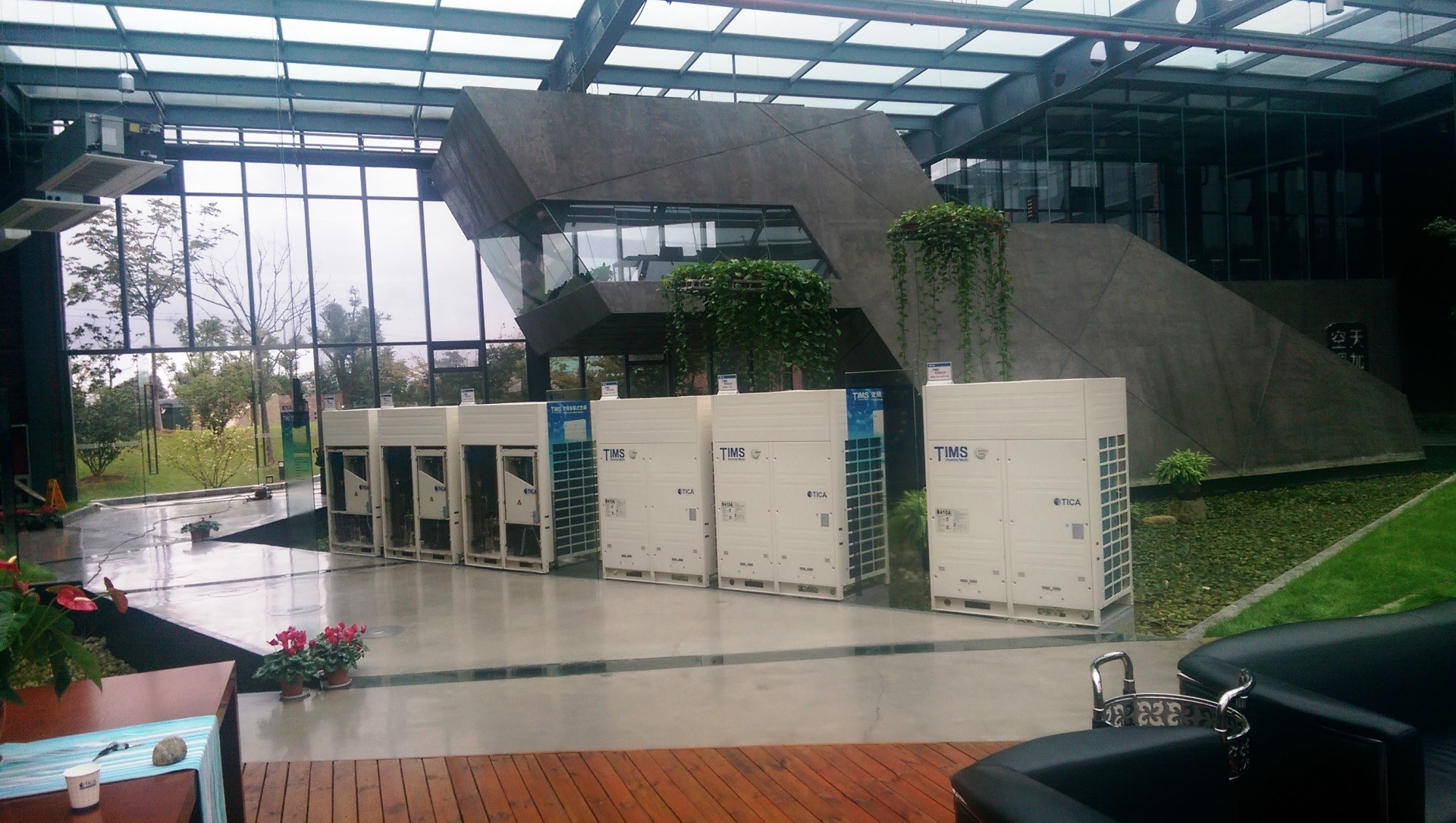 TICA-plant-5_2rz83564